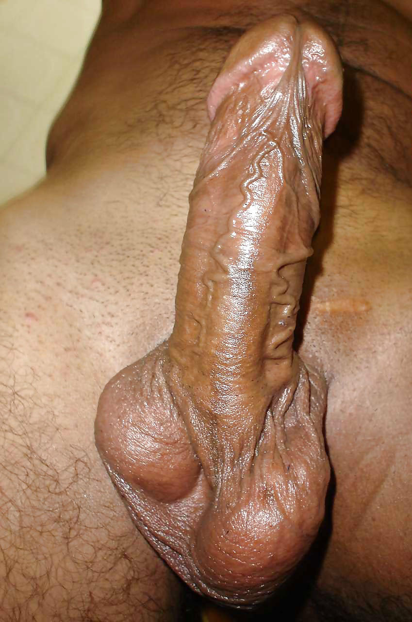 Indian Gay pics - Huge Indian muscular dick of Gay ...