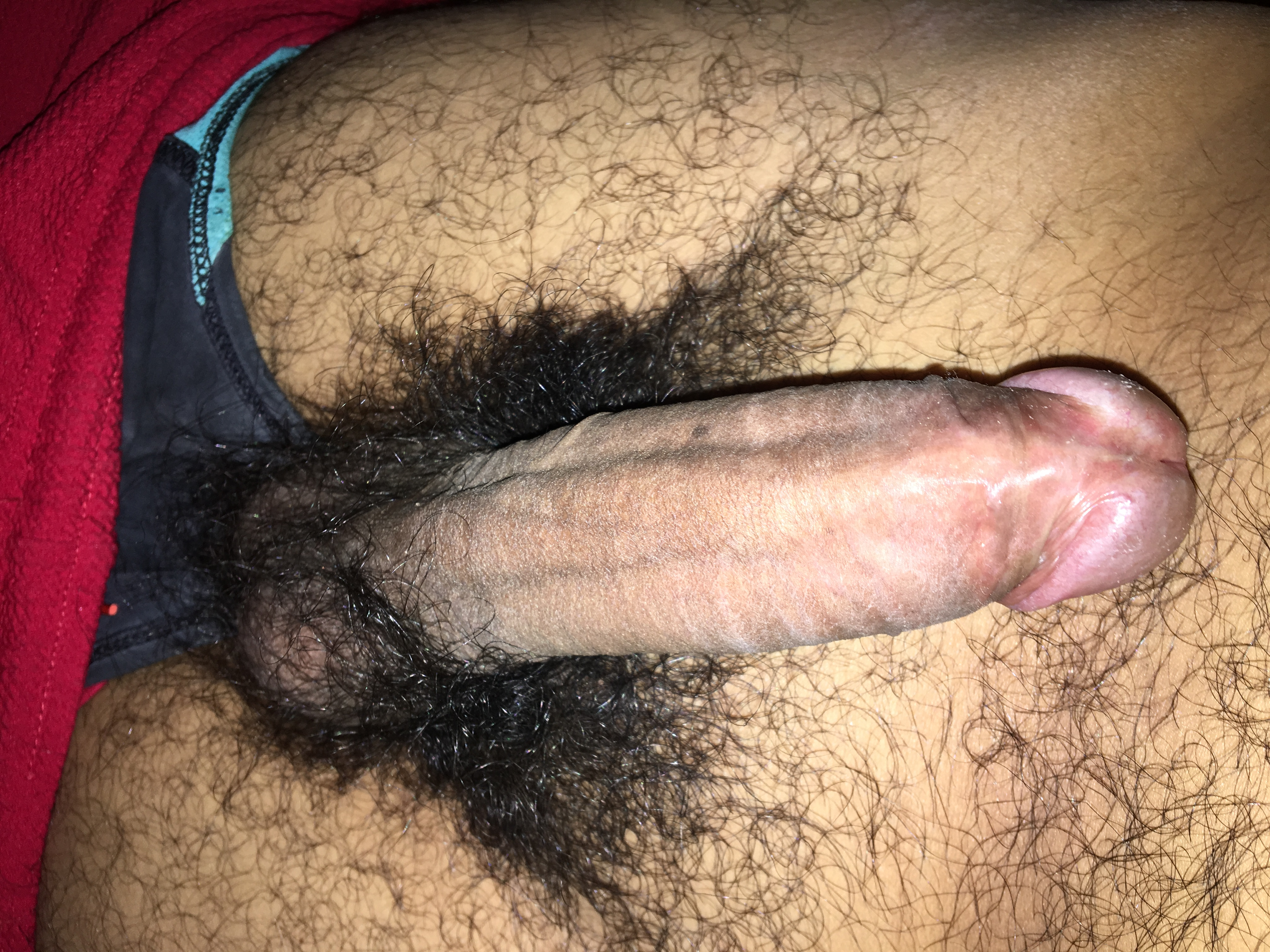 hairy-dick-pictures-kerala-girls-full-sex-photo
