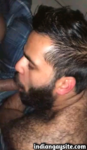 Indian gay blowjob video of a horny and slutty desi hairy bear sucking a big circumcised dick