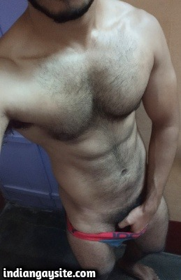 Muscular hairy hunk shows big cock in nude pics