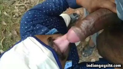 Forest cruising video of slutty cock sucker